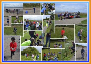 Year 4 Visit to the Wirral Country Park - June 2017