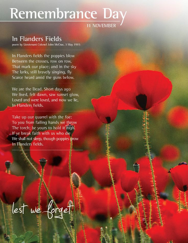 Remembrance day 2017 poppies for sale florence melly community in memory of all those who lost their lives in war our school are selling poppies on behalf of the royal british legion stick on poppies standard poppies mightylinksfo